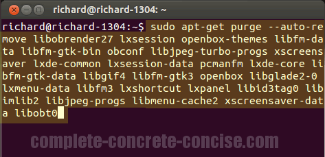 Ubuntu 13 04 - How to Completely Uninstall/Remove a Package